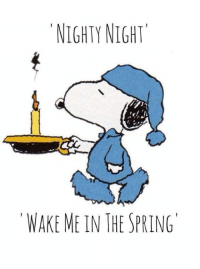 Memes, 🤖, and Nighty Night: NIGHTY NIGHT  WAKE ME IN THE SPRING