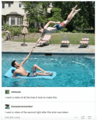 Taken, Tumblr, and Summer: nihtendo  i want a video of all the tries it took to make this  itseasytoremember  i want a video of the second right after this shot was taken  648,806 notes V impressive! #Tumblr #FunnyMemes #CreationOfAdam #Christian #Impressive #Summer