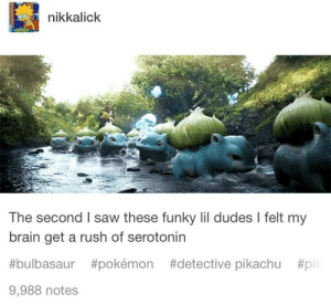 "Bulbasaur, Pikachu, and Pokemon: nikkalick  The second I saw these funky lil dudes I felt my  brain get a rush of serotonin  #bulbasaur #pokémon #detective pikachu #pil  9,988 notes ""Serotonin? In this economy?"""