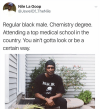 Memes, School, and Black: Nile La Goop  @JewelOf_TheNile  Regular black male. Chemistry degree.  Attending a top medical school in the  country. You ain't gotta look or be a  certain way.