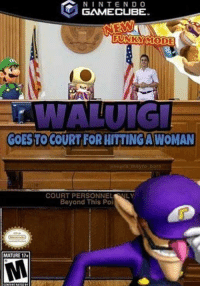 Irl, Me IRL, and Gamecube: NINTEND O  GAMECUBE  FUNKSYIMODE  GOESTOCOURT FOR HITTING/AWOMAN  COURT PERSONNELNLY  Beyond This Poi