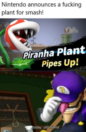 Nintendo what?: Nintendo announces a fucking  plant for smash!  Piranha Plant  Pipes Up!  today, old friend Nintendo what?