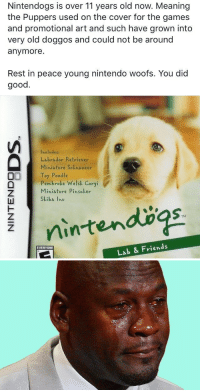 This broke my heart: Nintendogs is over 11 years old now. Meaning  the Puppers used on the cover for the games  and promotional art and such have grown into  very old doggos and could not be around  anymore.  Rest in peace young nintendo woofs. You did  good  Includes:  Labrador Retriever  Miniature Sckhauzer  Um Toy Poodle  Pembroke Welsk Corgi  Miniature Pinscher  Skiba l hu  Lab & Friends  EVERYONE This broke my heart