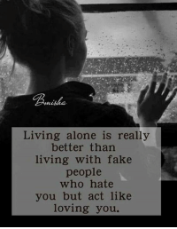 Being Alone, Fake, and Memes: nisha  Living alone is really  better than  living with fake  people  who hate  you but act like  loving you.