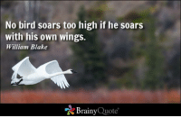 Memes, Too High, and 🤖: No bird soars too high if he soars  with his own wings.  William Blake  Brainy  Quote No bird soars too high if he soars with his own wings. - William Blake https://www.brainyquote.com/quotes/quotes/w/williambla101245.html #brainyquote #QOTD #bird #inspiration