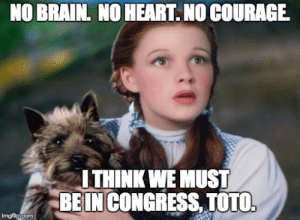 Image tagged in toto wizard of oz - Imgflip: NO BRAIN. NO HEART. NO COURAGE  ITHINK WE MUST  BEIN CONGRESS, TOTO  imgfip.com Image tagged in toto wizard of oz - Imgflip