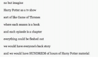 This needs to happen.: no but imagine  Harry Potter as a tv show  sort of like Game of Thrones  where each season is  a book  and each episode is a chapter  everything could be fleshed out  we would have everyone's back story  and we would have HUNDREDS of hours of Harry Potter material This needs to happen.