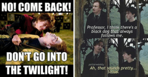 Top 18 #funny #harry #potter #memes: NO! COME BACK!  Professor, I think there's a  black dog that always  follows me.  DONT GO INTO  THE TWILIGHT!  potterweekly  Ah, that s  pretty.  Sirjus. Top 18 #funny #harry #potter #memes
