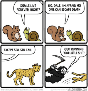 Shit, Death, and Forever: NO, DALE, I'M AFRAID NO  ONE CAN ESCAPE DEATH  SNAILS LIVE  FOREVER, RIGHT?  QUIT RUNNING  YOU LITTLE SHIT!  EXCEPT STU. STU CAN.  @MrLovenstein MRLOVENSTEIN.COM  THIS COMIC MADE POSSIBLE THANKS TO SHIBBY SAYS Haha jaguars are immortal