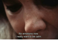 Now, Really, and Calm: No emotions now  l really want to be calm