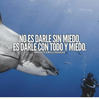 Family, Food, and God: NO ES DARLE SIN MIEDO  ES DARLE CON TODOY MIEDO  @MENTE$MILLONARIAS @lamentedelmillonario -- --- -- lamentedelmillonario theceo danielpira manager emprendedor family ligs weightloss enfocus God come let's tranport people work world add share book we colombia mexican american talk food success successful