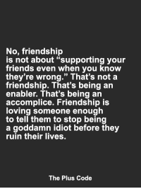 "Friends, Memes, and Friendship: No, friendship  is not about ""supporting your  friends even when you know  they're wrong."" That's not a  friendship. That's being an  enabler. That's being an  accomplice. Friendship is  loving someone enough  to tell them to stop being  a goddamn idiot before they  ruin their lives.  The Plus Code <3"