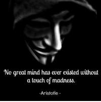 Memes, Aristotle, and Lifetime: No great mind has ever existed without  a touch of madness.  Aristotle The one's crazy enough to think they can are the ones that get it done. It takes a certain type of crazy courage to materialize our dreams but with a lifetime to achieve it... who says you shouldn't go after it? Dream so big that average people will call you crazy. markiron