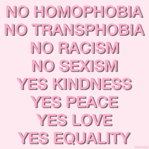 transphobia: NO HOMOPHOBIA  NO TRANSPHOBIA  NO RACISM  NO SEXISM  YES KINDNESS  YES PEACE  YES LOVE  YES EQUALITY  PINKLILIES