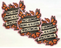 No human being is illegal!! ❤️🦋🦋✊🏾 Via @kiwa4justice - art by @gildednopal HereToStay NoHumanBeingIsIllegal: NO HUM  BEING IS ILL  BEING IS ILLEGAL  #NOT MORE  UMA  IS ILLEGAL  No human being is illegal!! ❤️🦋🦋✊🏾 Via @kiwa4justice - art by @gildednopal HereToStay NoHumanBeingIsIllegal