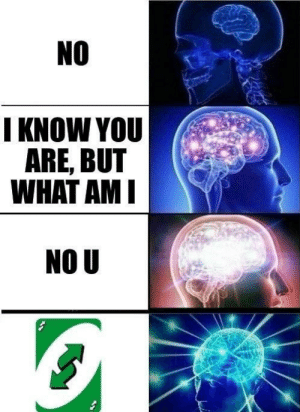 Dank, Memes, and Reddit: NO  I KNOW YOU  ARE, BUT  WHAT AM I  NO U REVERSE! by TheMarchHopper FOLLOW 4 MORE MEMES.