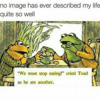 "Funny, Toad, and Toads: no image has ever described my life  quite so well  ""We must stop eating!"" cried Toad  as he ate another."