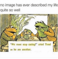 "Memes, 🤖, and Toad: no image has ever described my life  quite so well  ""We must stop eating!"" cried Toad  as he ate another. Me at brunch today"
