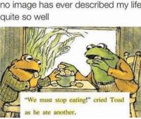 "Life, Image, and Quite: no image has ever described my life  quite so well  ""We must stop eating!"" cried Toad  as he ate another. 😭😭 make sure you're following my new account @mycringe"