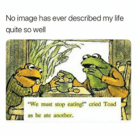 "Funny, Life, and Memes: No image has ever described my life  quite so well  We must stop eating"" cried Toad  as he ate another. Follow me @hilarious.ted for more animal memes"
