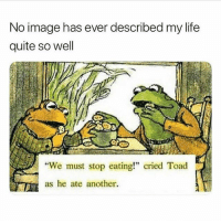"Life, Image, and Quite: No image has ever described my life  quite so well  ""We must stop eating!"" cried Toad  as he ate another. Follow me on @rob"