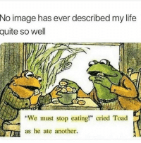 "Funny, Life, and True: No  image has ever described my life  quite so well  We must stop eating!"" cried Toad  as he ate another. True 😂😰"