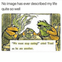 "Funny, Life, and Image: No image has ever described my life  quite so well  ""We must stop eating! cried Toad  as he ate another. 😰"