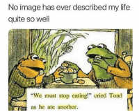 "Funny, Life, and Lol: No image has ever described my life  quite so well  ""We must stop eating!"" cried Toad  as he ate another. Mood of 2019 lol"