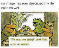 """Crying, Dank, and Life: no image has ever described my life  quite so well  """"We must stop eating!"""" cried Toad  as he ate another. POP A MOLLY IM SWEATIN WOOOOOOO"""