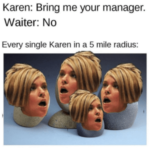 """No"" isn't even in their vocabulary. #Memes #Karen #Entitled #Dank: ""No"" isn't even in their vocabulary. #Memes #Karen #Entitled #Dank"