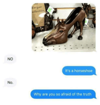 Truth, Why, and You: NO  It's a horseshoe  No.  Why are you so afraid of the truth