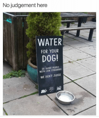 Funny, Water, and Dog: No judgement here  WATER  FOR YOUR  DOG!  OR SHORT PEOPLE  WITH LOW STANDARDS  WE DON'T JUDGE 😂😂😂 | More 👉 @miinute