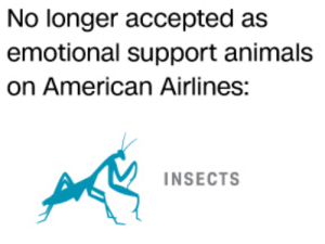 America, Animals, and Target: No longer accepted as  emotional support animals  on American Airlines:  INSECTS icel:a sad day for america