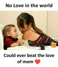 Love, Memes, and World: No Love in the world  Could ever beat the love  of mom