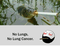 No Lungs,  No Lung Cancer. RT @Hilarious_Idiot: