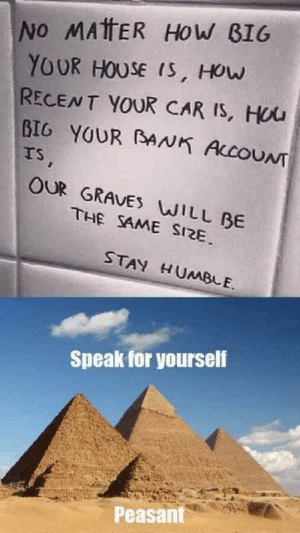 Bank, House, and Humble: No MATTER HoW B1G  YOUR HOUSE (S, HOuw  RECENT YOUR CAR IS, Hou  BIG YOUR BANK ALcOUNT  rs  OUR GRAVES WILL BE  THE SAME SI2E  STAY HUMBLE.  Speak for yourself  Peasant Speak for yourself
