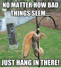Mikey: NO MATTER HOW BAD  THINGS  SEEM  JUST HANG IN THERE!  quick meme com Mikey