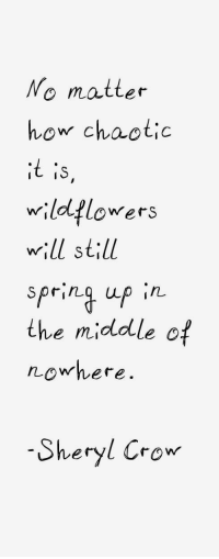 Sheryl: No matter  how chaotic  wildflowers  wll still  the midddle of  Sheryl Crow
