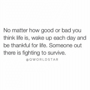 """Start the day with a positive mindset...be blessed..."" 🙏 @QWorldstar #PositiveVibes https://t.co/SYIbHuZRS0: No matter how good or bad you  think life is, wake up each day and  be thankful for life. Someone out  there is fighting to survive.  QWORLDSTAR ""Start the day with a positive mindset...be blessed..."" 🙏 @QWorldstar #PositiveVibes https://t.co/SYIbHuZRS0"