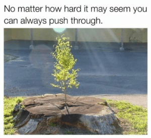 How, Push, and Can: No matter how hard it may seem you  can always push through. You can and you will