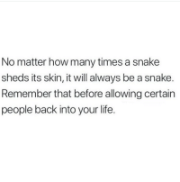 How Many Times, Life, and Snake: No matter how many times a snake  sheds its skin, it will always be a snake.  Remember that before allowing certain  people back into your life.