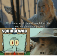 Run, Cross, and What Is: No matter what comes through that gate,  you will stand your ground  SQUIDGEWOB  RUN What is this, a cross-over episode?