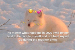 who knows what 2020 has in store but we will do our best: no matter what happens in 2020 i will try my  best to be nice to myself and not beat myself  up during the tougher times who knows what 2020 has in store but we will do our best