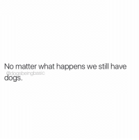 Relevant 24-7 365. @bustle: No matter what happens we still have  dogsbeingbasic  dogs Relevant 24-7 365. @bustle