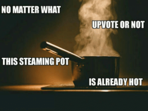 Hot, Pot, and What: NO MATTER WHAT  UPVOTE OR NOT  THIS STEAMING POT  IS ALREADY HOT Checkmate