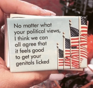 Good, Never, and Can: No matter what  your political views,  I think we can  all agree that  it feels good  to get your  genitals licked Never forget