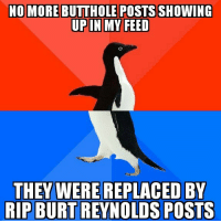 Burt Reynolds, Nice, and Can: NO MORE BUTTHOLE POSTS SHOWING  THEY WERE REPLACED BY  RIP BURT REYNOLDS POSTS This is why we cant have anything nice.