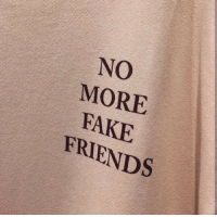 Fake, Friends, and Fake Friends: NO  MORE  FAKE  FRIENDS