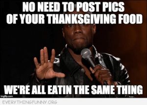 63158bef Food, Funny, and Memes: NO NEED TO POST PICS OF YOUR THANKSGVING FOOD