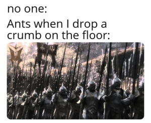 Meme, Lord of the Rings, and Ants: no one  Ants when I dropa  crumb on the floor: Captains Log: Lord Of the Rings Meme 1